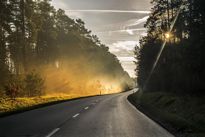 Droga z Piły do Kaczor to tylko początek. Dolina Noteci zwali cię z nóg. Fot. Marcin Maziarz