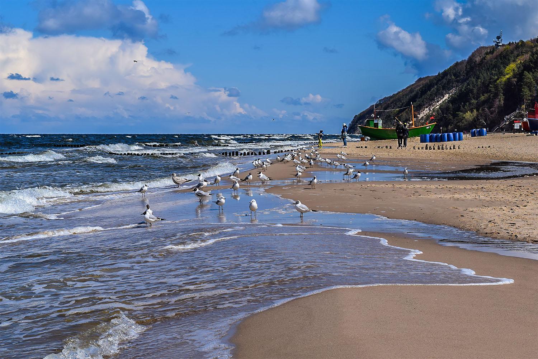 Zdążysz zobaczyć morze przed wakacjami? Fot. Marcin Maziarz
