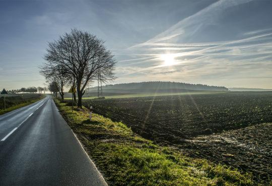 Droga zakochana w Dolinie Noteci. Fot. Marcin Maziarz