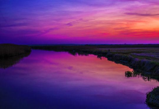 Wieczór nad Notecią w rejonie Miasteczka Krajeńskiego. Fot. Marcin Maziarz