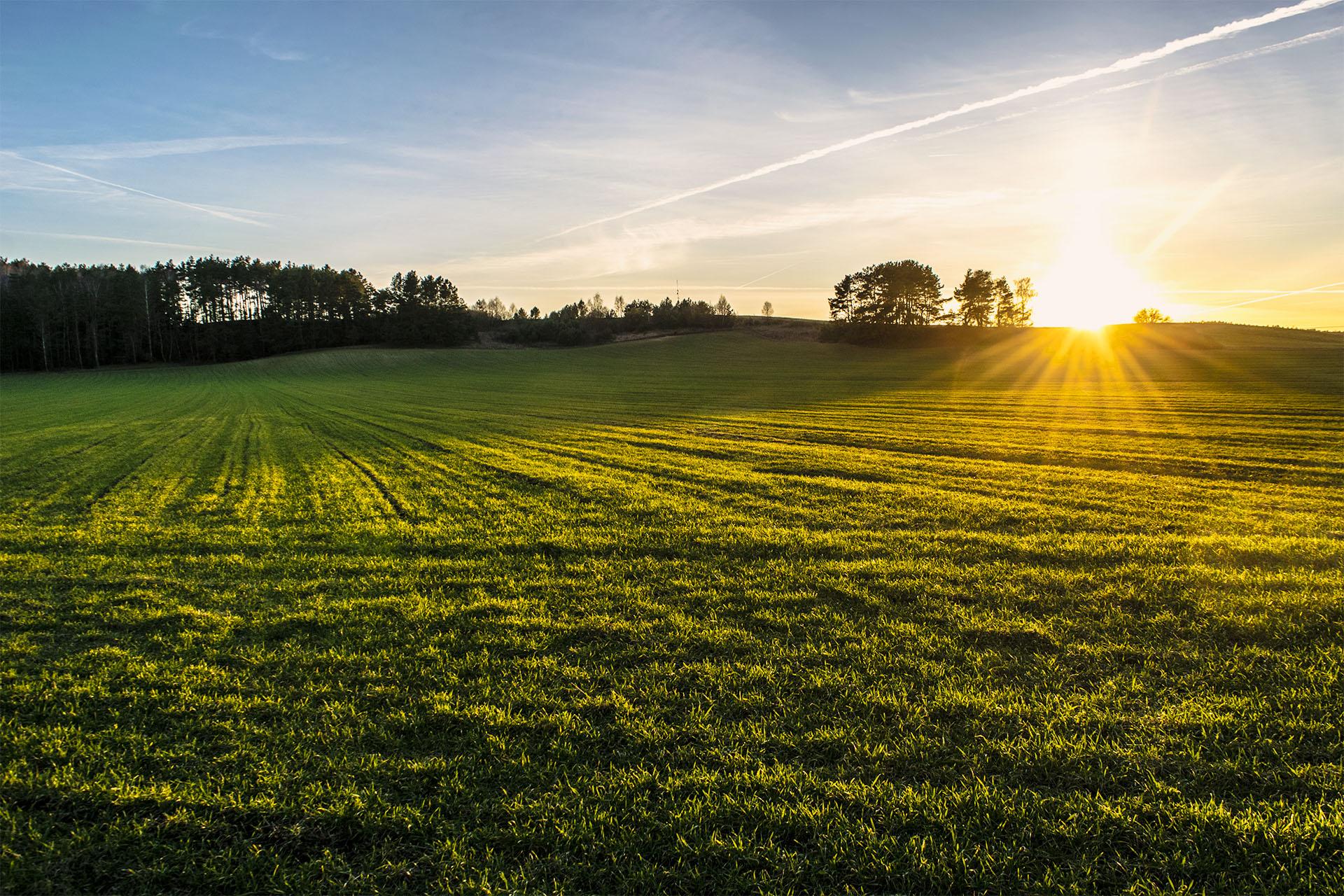 Zachód słońca nad wzgórzami w Tarnowie (koło Starej Łubianki). Fot. Marcin Maziarz