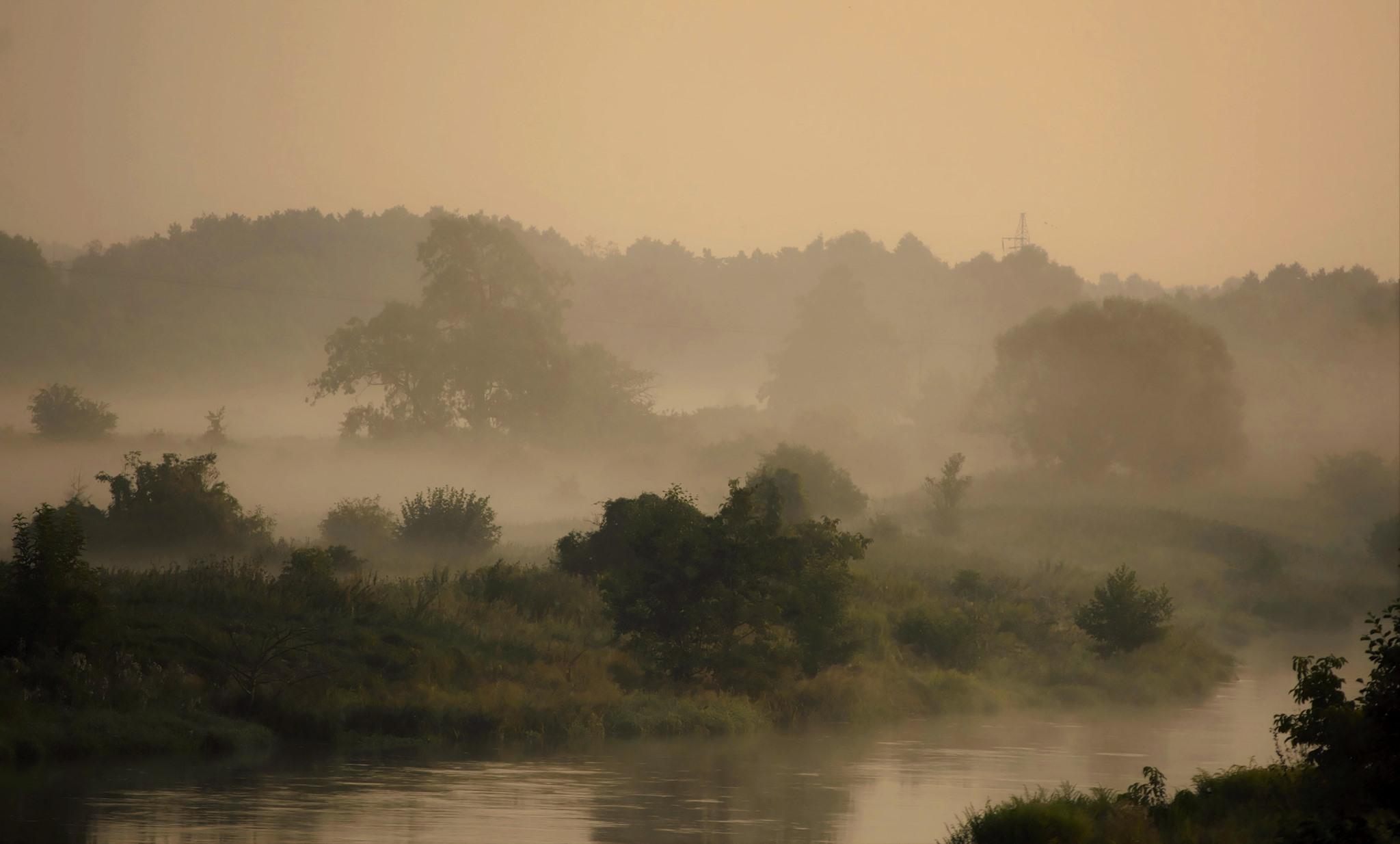 Poranne mgły nad Gwdą. Fot. Bożena Andrzejewska