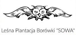 Leśna Plantacja Borówki SOWA