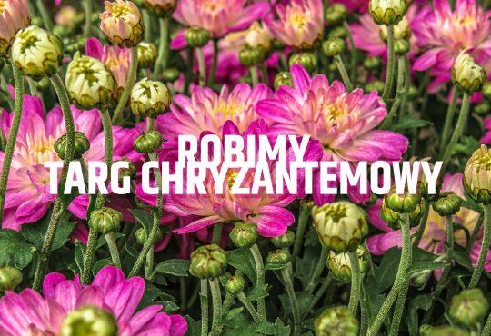 Targ Chryzantemowy w Pile, Plac Staszica, poniedziałek, 2 listopada, godz. 14.00. Fot. Anastasiya Romanova/Unsplash