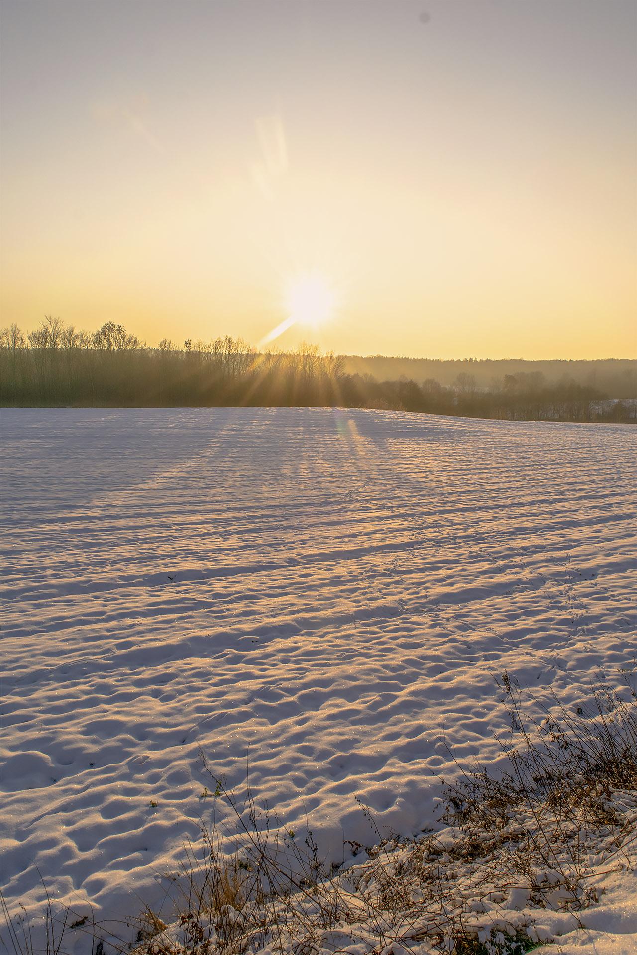 Przykryte śniegiem pole między Grabionną i Białośliwiem. Fot. Marcin Maziarz