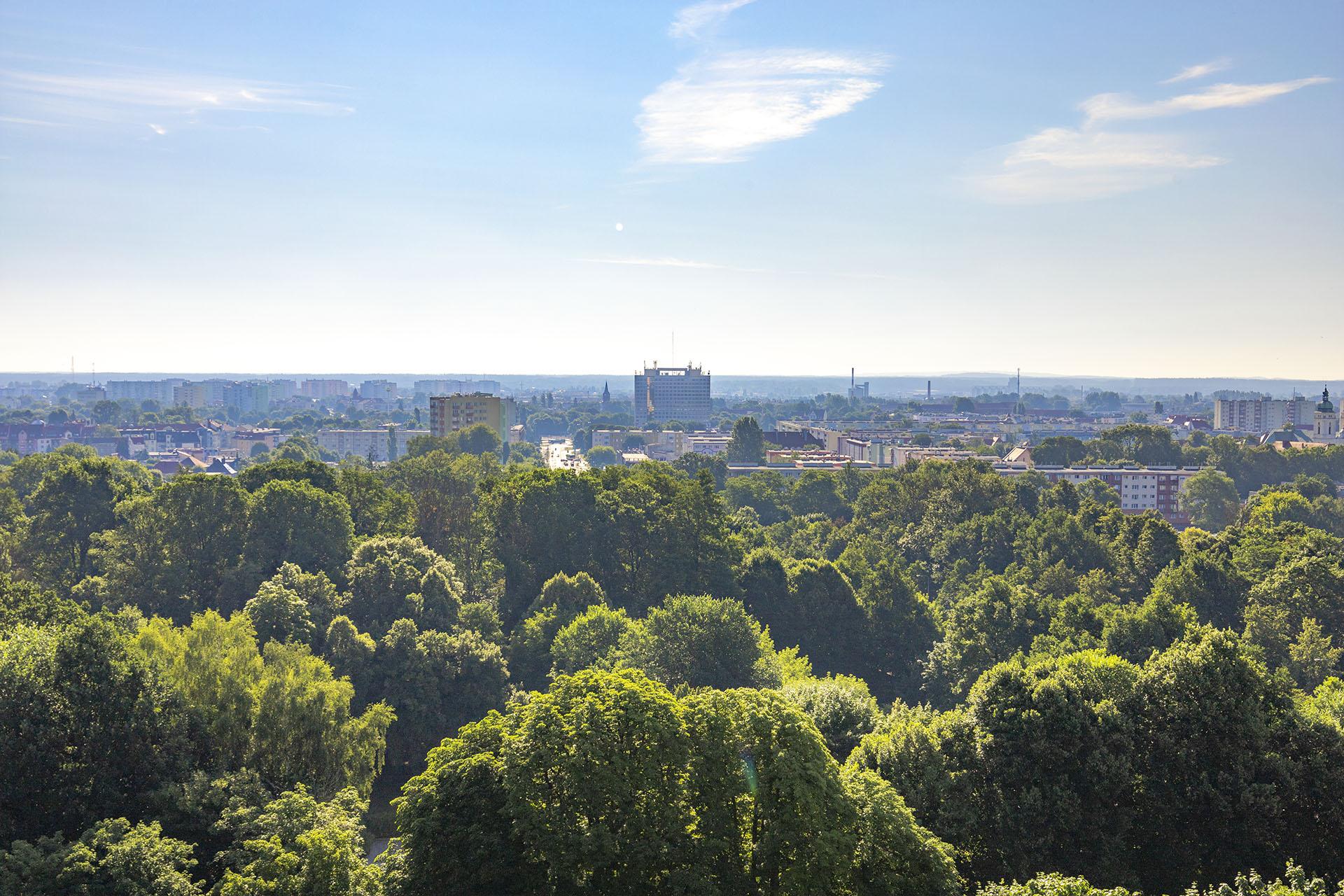 Panorama Piły z wieżowca przy baszcie. Fot. Marcin Maziarz