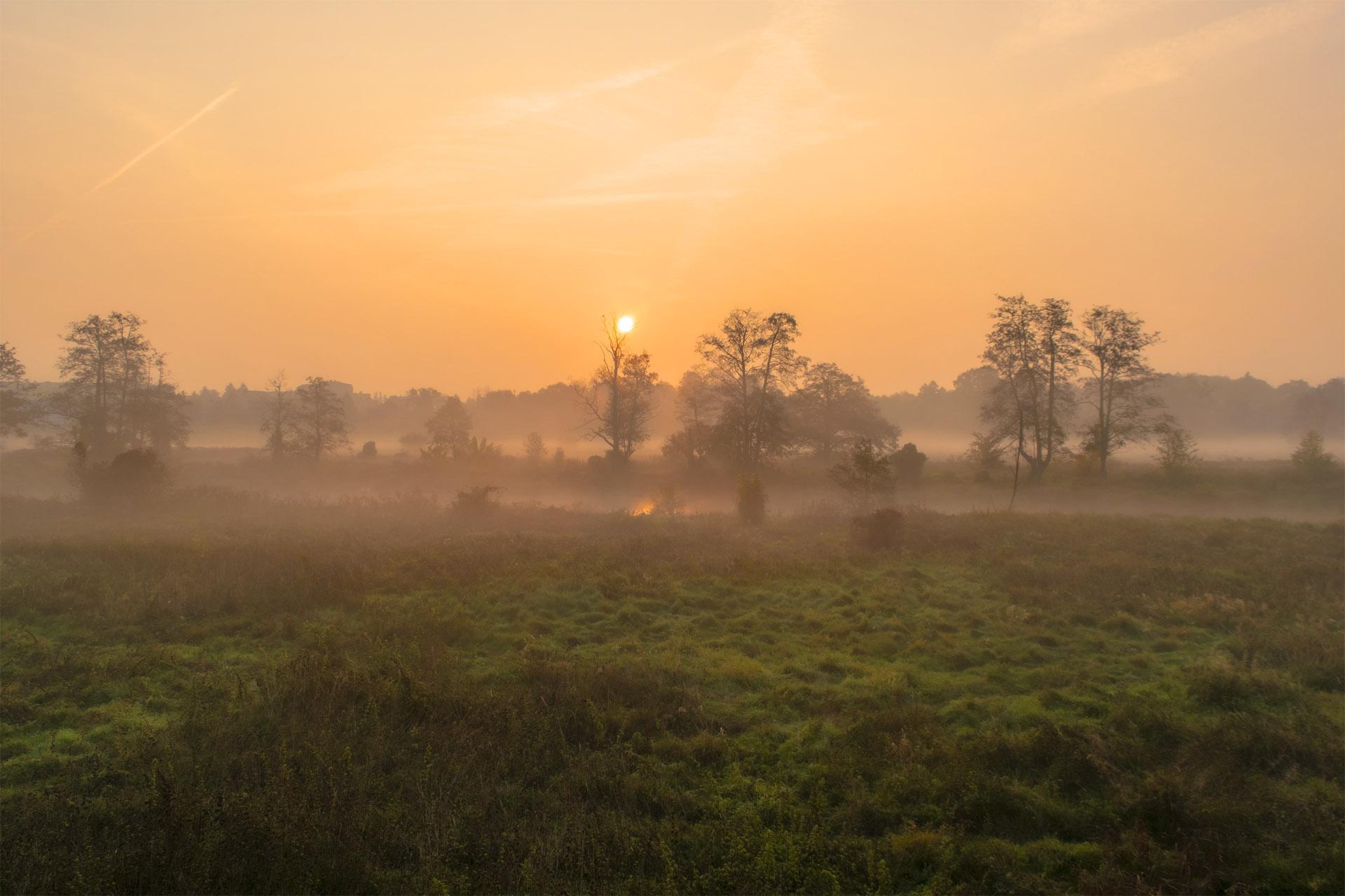 Łąki nad Gwdą są idealnymi terenami spacerowymi dla poszukujących spokoju. Nie tylko w mgliste poranki. Fot. Marcin Maziarz